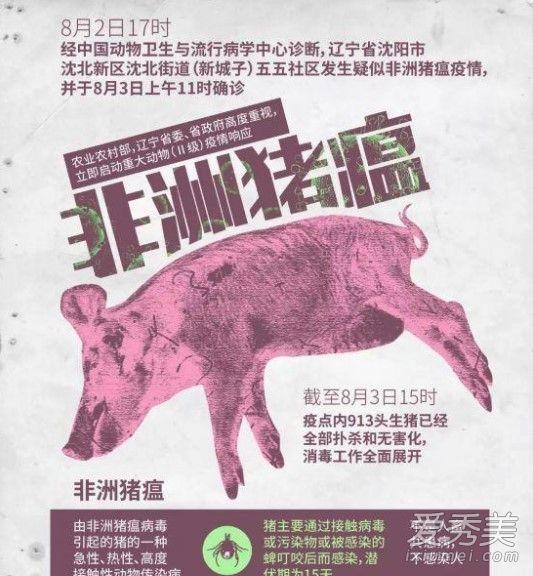 锦州盘锦非洲猪瘟怎么回事 非洲猪瘟危害有多大-汇美优普-热门搜索话题榜